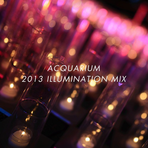 Acquarium 2013 Illumination Mix